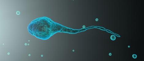 Os problemas de infertilidade e a acupuntura