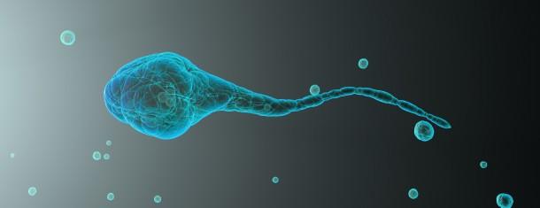 Fertilidade e Acupunctura
