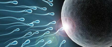 Problemas de infertilidade